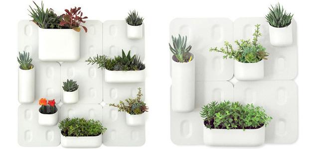 Urban walled garden